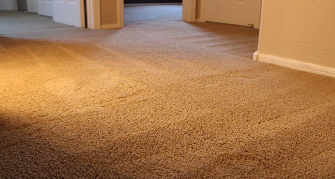 Carpet Repair Louisville Carpet Cleaning Carpet